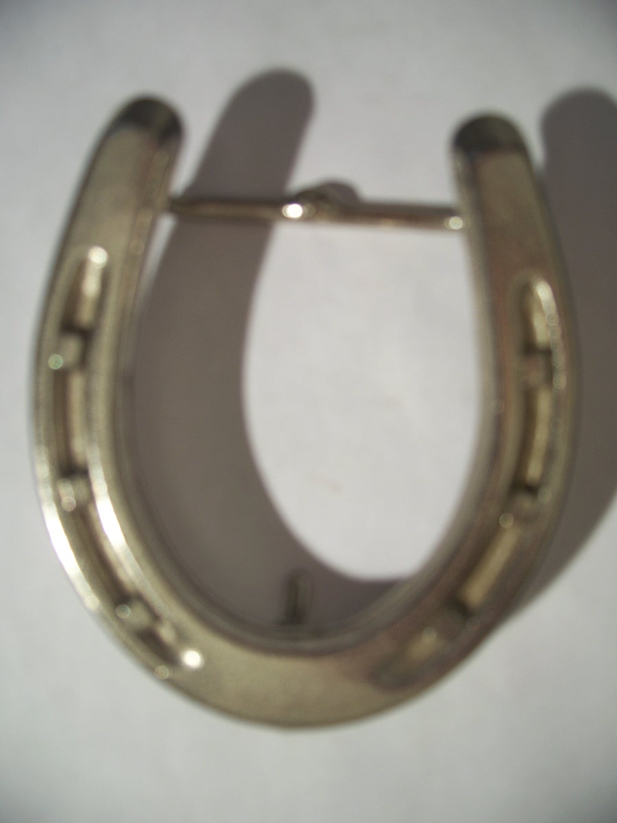 Western Cowboy Horseshoe Belt Buckle